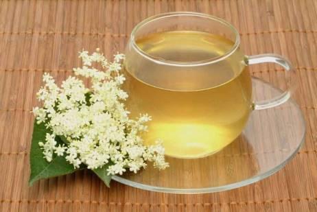 чай из бузины полезные свойства