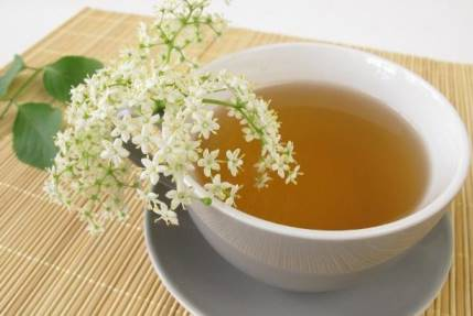 как приготовить чай из бузины