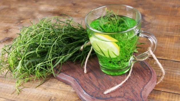 Польза травы тархун для женского здоровья
