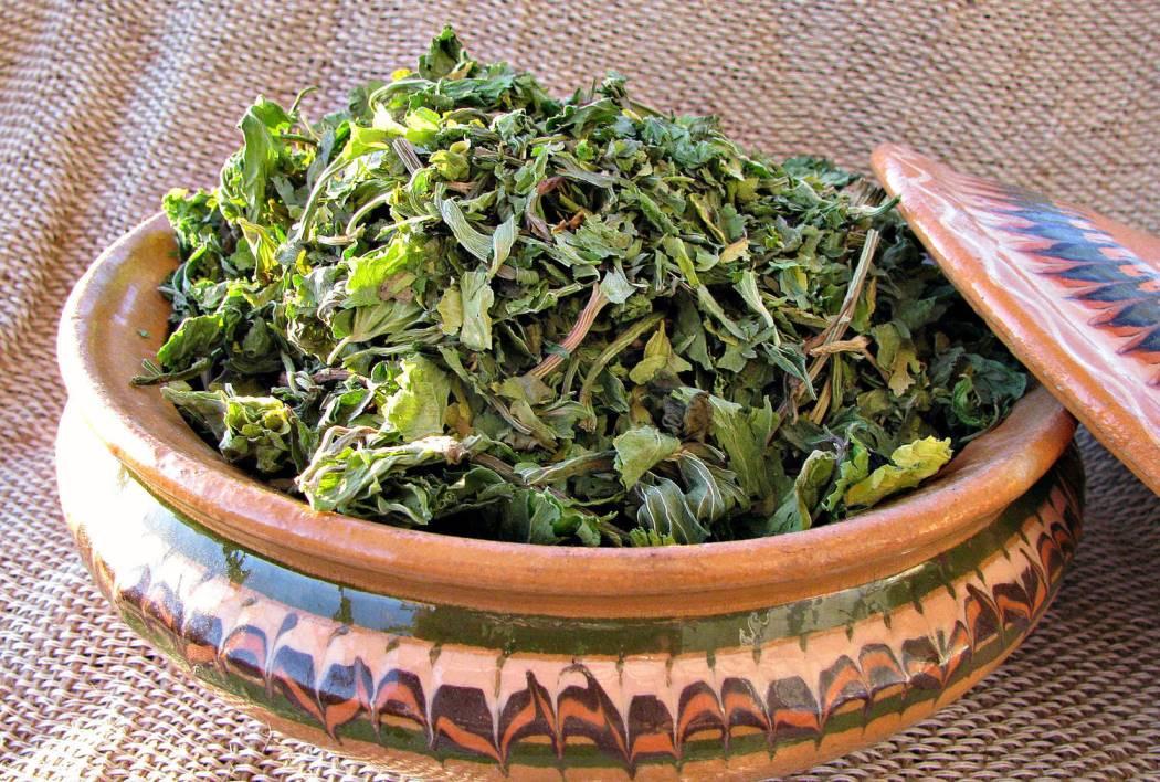 чай из пустырника полезные свойства