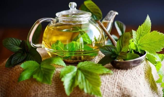 травяной чай из листьев смородины