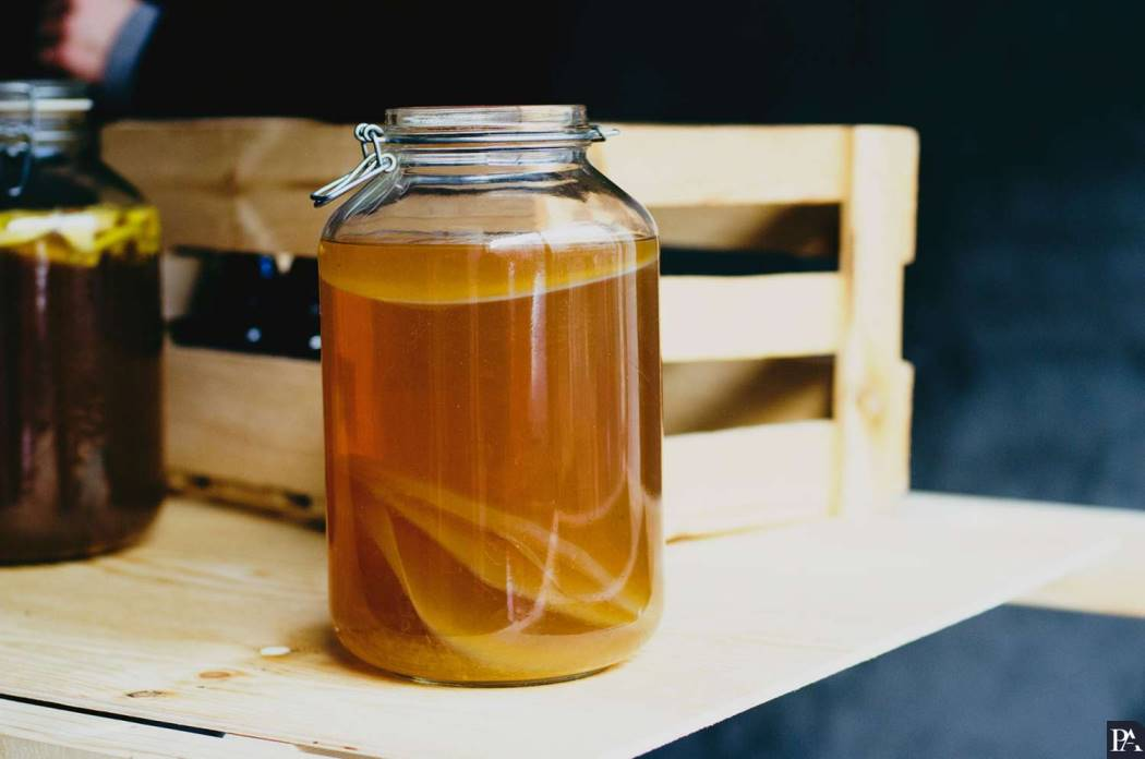 Чайный гриб: от выращивания до применения