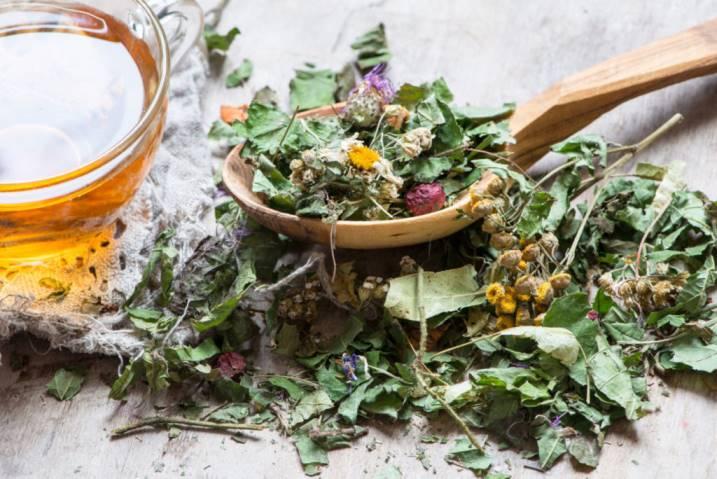 александровна врач мир лекарственных растений картинки кухня очень