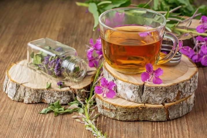 Полезен ли мужской Иван-чай для женского организма